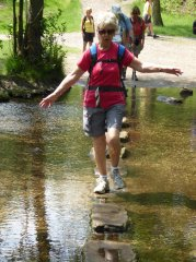 Cannock Chase stepping stones.jpg